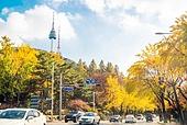 가을, 가을 (계절), 한국 (동아시아), 대한민국 (한국), 단풍나무 (낙엽수), 단풍철 (가을), 남산 (서울), 남산서울타워, 남산서울타워 (서울), 랜드마크, 은행나무, 은행잎