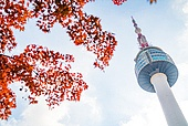 가을, 가을 (계절), 단풍나무 (낙엽수), 단풍철 (가을), 남산 (서울), 남산서울타워, 남산서울타워 (서울)