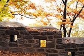 가을, 가을 (계절), 계절, 감성, 백그라운드, 낙엽, 단풍철 (가을), 단풍잎 (잎), 11월, 성벽 (담장배경)