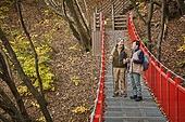 다리 (인공구조물), 가을, 자연 (주제), 남성, 하이킹 (아웃도어), 친구 (컨셉)