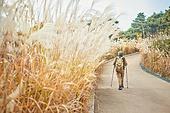 가을, 자연 (주제), 남성, 하이킹 (아웃도어), 여행, 산림욕, 걷기 (물리적활동)