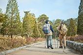 가을, 자연 (주제), 남성, 하이킹 (아웃도어), 여행, 산림욕, 걷기 (물리적활동), 마주보기 (위치묘사)