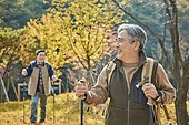 가을, 자연 (주제), 남성, 하이킹 (아웃도어), 여행, 산림욕, 걷기 (물리적활동), 미소, 밝은표정