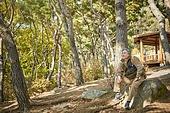숲, 노인 (성인), 휴식, 혼자여행 (여행), 실버라이프