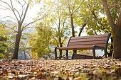 가을, 공원, 벤치