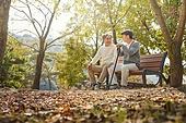 노인 (성인), 가을, 휴식, 공원벤치, 친구 (컨셉), 미소, 위로