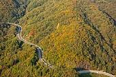 자연 (주제), 산, 자연풍경, 산림, 가을, 드론촬영 (카메라앵글), 항공촬영, 가을 (계절), 단풍나무 (낙엽수), 단풍철 (가을), 도로