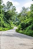 길, 시골길 (보행로), 컨츄리로드 (도로)