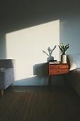 실내, 백그라운드, 햇빛 (빛효과), 뜨거움 (컨셉), 인테리어, 식물, 그림자, 벽 (건물특징), 화분, 협탁, 서랍장 (가구)
