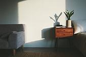 실내, 백그라운드, 햇빛 (빛효과), 뜨거움 (컨셉), 인테리어, 식물, 그림자, 벽 (건물특징), 화분, 협탁, 서랍장 (가구), 소파