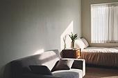 빔 (상태), 빛 (자연현상), 백그라운드, 햇빛, 뜨거움, 인테리어, 식물, 협탁, 서랍장 (가구), 침대, 소파, 가구, 창문