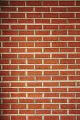 빔 (상태), 빛 (자연현상), 백그라운드, 햇빛, 뜨거움, 인테리어, 식물, 벽 (건물특징), 벽돌, 패턴