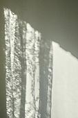 빔, 빛 (자연현상), 백그라운드, 햇빛, 사람없음, 인테리어, 그림자, 레이스 (천), 벽 (건물특징)