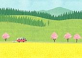 봄, 풍경 (컨셉), 꽃, 풀 (식물), 맑은하늘 (하늘), 벚꽃, 벚나무 (과수), 캠핑트레일러 (트레일러), 캠핑, 언덕, 유채꽃 (식물)
