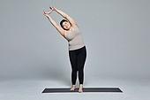 다이어트, 비만, 체형관리 (건강한생활), 건강한생활 (주제), 건강관리 (주제), 요가, 운동기구