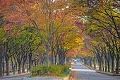 인천대공원