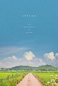 계절, 봄, 백그라운드, 풍경 (컨셉), 풀 (식물), 길, 시골풍경 (교외전경), 구름