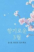모바일백그라운드, 문자메시지 (전화걸기), 봄, 3월, 벚꽃