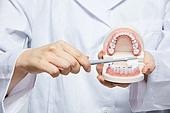 치아, 치아건강, 치과의사, 의료성형뷰티 (주제)