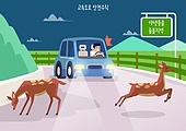 고속도로, 도로교통법, 자동차, 운전, 안전, 캠페인, 야생동물, 고라니, 밤 (시간대)