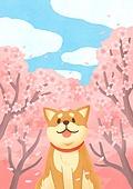 동물, 꽃, 풍경 (컨셉), 봄, 개 (개과), 강아지, 벚꽃