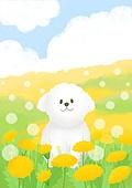 동물, 꽃, 풍경 (컨셉), 봄, 개 (개과), 강아지, 꽃밭