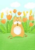 동물, 꽃, 풍경 (컨셉), 봄, 햄스터