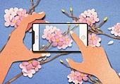 페이퍼아트, 종이, 사람손 (주요신체부분), 손짓 (제스처), 스마트기기 (정보장비), 스마트폰, 봄, 벚꽃, 사진촬영 (촬영)