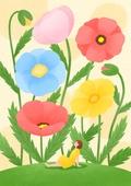 꽃, 사람, 소녀, 미니어쳐 (공예품), 여름, 양귀비, 양귀비 (온대성꽃)