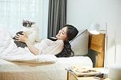 한국인, 라이프스타일, 휴식 (정지활동), 휴식, 행복, 고양이 (고양잇과), 반려동물 (길든동물), 하이랜드스트레이트