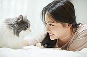 라이프스타일, 휴식 (정지활동), 행복, 고양이 (고양잇과), 반려동물 (길든동물), 마주보기 (위치묘사)