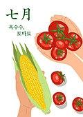 음식, 제철음식, 탑앵글 (카메라앵글), 7월, 토마토, 옥수수, 사람손 (주요신체부분)