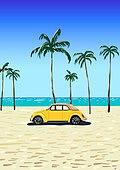 백그라운드, 백그라운드 (주제), 여름, 휴양지, 야자나무 (열대나무), 야자나무, 해변, 자동차