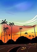 백그라운드, 백그라운드 (주제), 여름, 휴양지, 야자나무 (열대나무), 야자나무, 일몰 (땅거미)