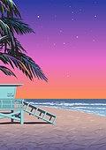 백그라운드, 백그라운드 (주제), 여름, 휴양지, 야자나무 (열대나무), 야자나무, 해변, 바다, 일몰 (땅거미)