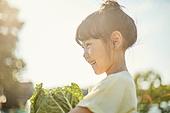 소녀, 유치원생, 견학, 농업, 유기농, 주말농장, 농작물, 농업 (주제), 배추