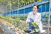 스마트팜, 농업, 연구 (주제), 생명공학, ICT