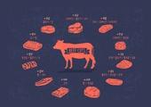 육류, 육류 (음식), 소 (발굽포유류), 쇠고기 (붉은고기)