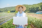 귀농, 농업, 채소밭, 채소밭 (경작지), 농작물, 판 (인조물건), 플래카드 (안내판)