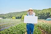 농업, 채소밭 (경작지), 농작물, 캠페인, 플래카드 (안내판)