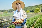 귀농, 농업, 농부 (농촌직업), 수확, 수확 (움직이는활동), 유기농, 채소밭 (경작지), 텃밭작물 (경작), 농작물, 공동체밭, 생감자 (채소)