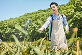농업, 농부 (농촌직업), 채소, 채소밭, 농작물, 농약살포기 (농기계), 농약살포기