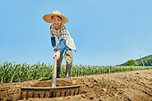 시골풍경 (교외전경), 농업, 농부 (농촌직업), 경작, 일 (물리적활동), 농기계 (농업설비)