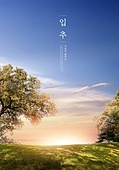가을, 입추, 풍경 (컨셉), 계절, 감성, 추억, 자연풍경