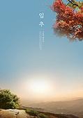 가을, 입추, 풍경 (컨셉), 계절, 감성, 추억, 자연풍경, 하이킹 (아웃도어), 단풍나무, 단풍철