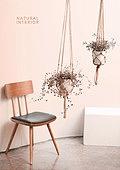인테리어, 누드컬러, 감성, 트렌드 (컨셉), 자연스러움 (컨셉), 의자 (좌석), 반려식물