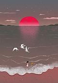 여름, 밤 (시간대), 풍경 (컨셉), 일몰 (땅거미), 태양, 일몰, 갈매기, 소녀
