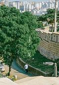 여름, 여름 (계절), 햇빛, 풍경 (컨셉), 도시풍경 (도시), 교외전경 (Setting), 서울 (대한민국), 여행, 휴식, 골목길, 낙산공원