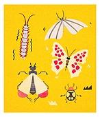 곤충, 벌레, 나방