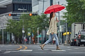 폭우 (비), 기상 (날씨), 날씨, 비 (물형태), 장마, 장마 (계절), 폭우, 우산 (액세서리)